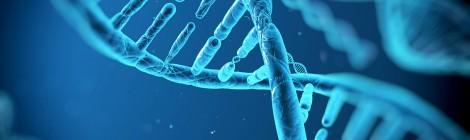 Test zdrady w oparciu o badanie DNA